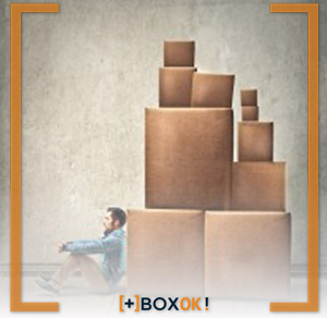 BoxOk - self storage door to door